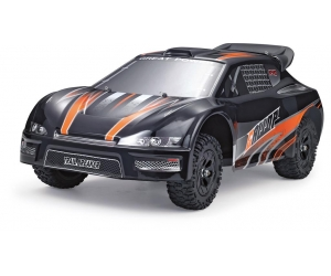1:12 4WD highest 2.4GHZ high-speed track RC racing