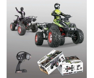 1:12 RC Truck FY04 RTR car 4WD off Road Buggy Full Proportional Model