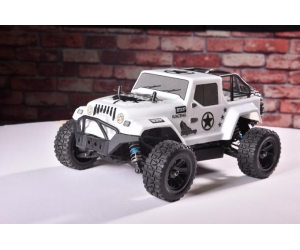 1:16 2.4GHz 4WD RC High Speed Racing Car Herdsman