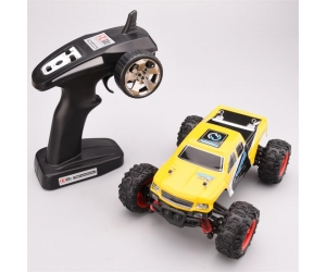 1:24 Full Scale 2.4GHz RC High Speed Off-road Racing Car 4WD