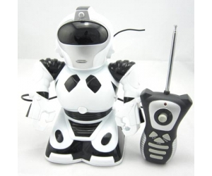 Hot sale R/C Sound Robot Toy SD00295901