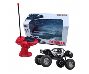 Singda toys 2019  Newest 1:20 2WD RC Rock Crawler