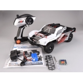 Chine 01:12 2.4GHz RC voiture haute vitesse Top Racing Series usine