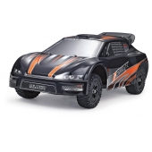 China 1:12 4WD highest 2.4GHZ high-speed track RC racing factory