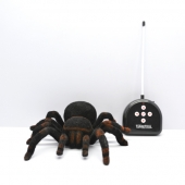 China 4 Channel Radio Control Tarantula Electronic Insects Toys factory